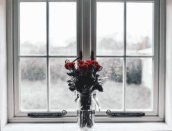 Kwiaty na oknie
